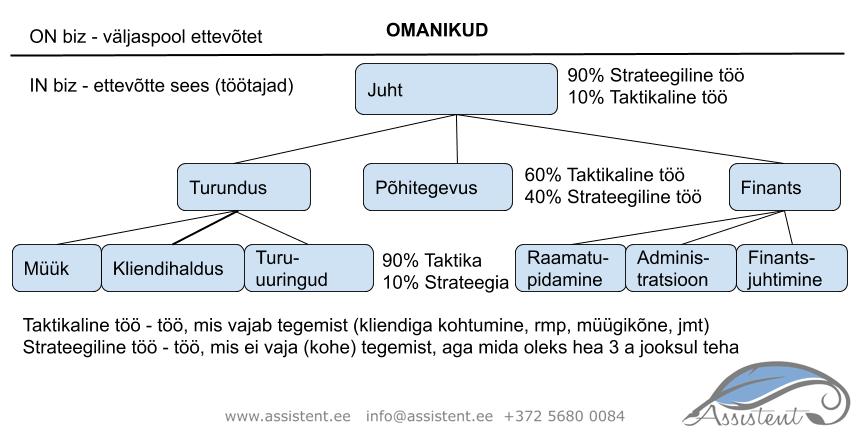 Ettevõtte struktuur - info@assistent.ee +372 5680 0084
